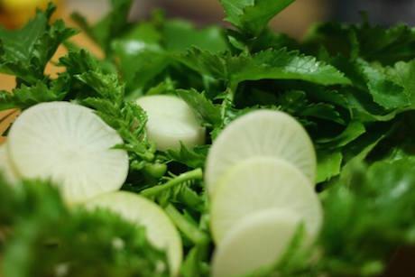 畑 自然 野菜 自然栽培 オーガニック 有機栽培 無添加 スローライフ スローフード 栄養豊富 飛騨高山